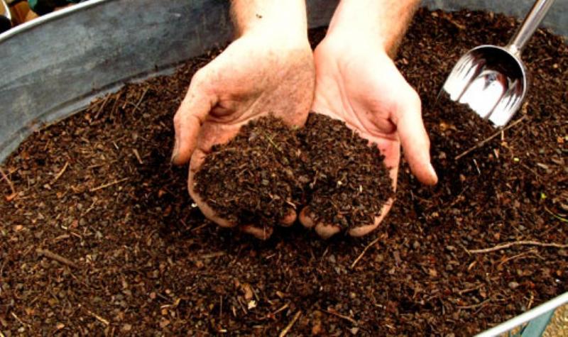 Kompost-yapimi-66461